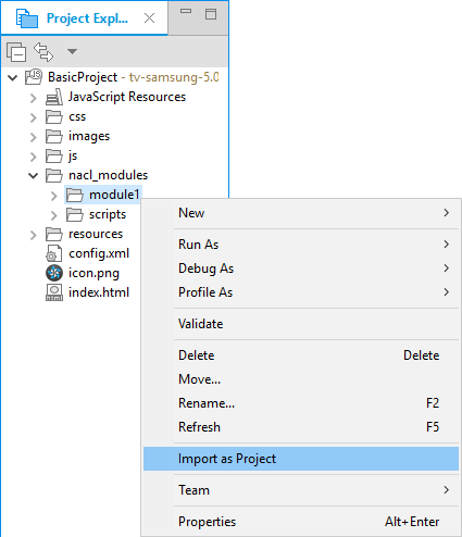 Figure 4. Import NaCl module as a project
